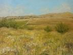 поля,холмы и летний зной