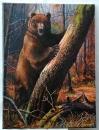 Медведь в ночном лесу
