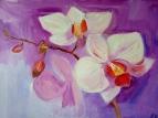 Орхидеи /  Ирина Якубик