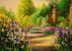 В саду зацвели ирисы