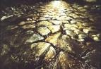 Солнце в камне