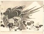 катё-га (цветы и птицы)
