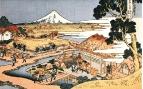 Чайная плантация Katakura