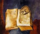 Череп на раскрытой книге