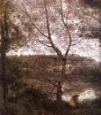 Женщина под деревом