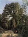 Опушка леса в Виль д Авре
