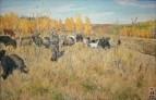 Овцы пасутся. 1944