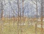 Весенний пейзаж. Середина 1900-х