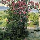 Умбрийская долина. 1910-е