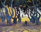 PlaneTrees, Place des Lices, Saint-Tropez, 1893