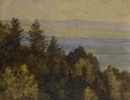 Лесной склон на фоне гор, неизв. дата
