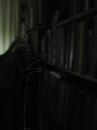 Его библиотека.......