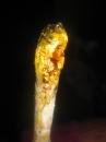 золотая статуэтка.......